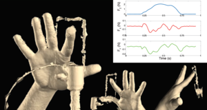 Statistical Modelling of Fingertip Deformations and Contact Forces during Tactile Interaction